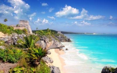 Assurance de location de voiture en Martinique, comprendre les différentes offres des loueurs