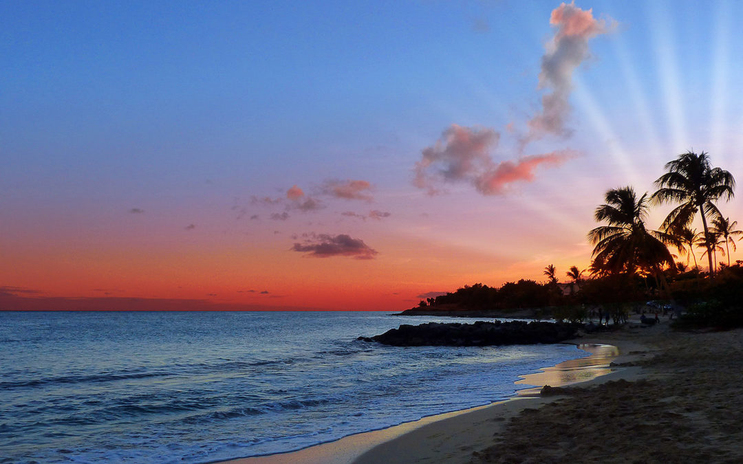 Location de voiture pas chère en Martinique, comment trouver les meilleures offres ?