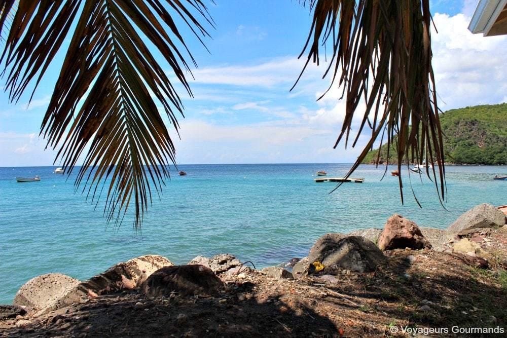 Combien coûte une voiture de location en Martinique ?
