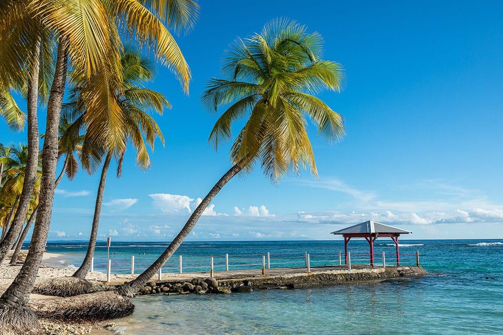 Location d'une voiture citadine en Guadeloupe, quelles offres proposées ?