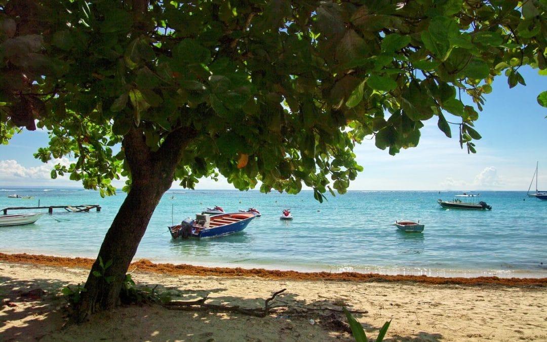 Visiter la Guadeloupe voici le Top 5 de votre séjour !