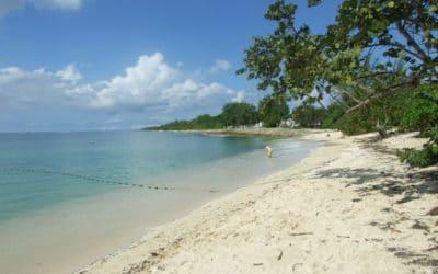 À quelle période faut-il visiter la Guadeloupe ?