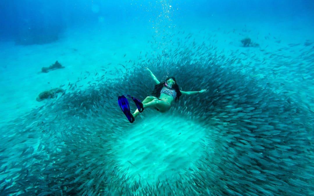 Séjour en Guadeloupe, découvrir des activités sensationnelles