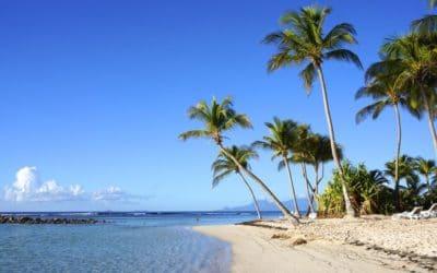 Visiter la Guadeloupe en janvier, quelle météo pour mon séjour?